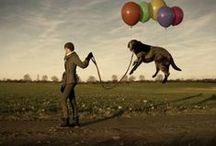 """Fotografia / """"Arte nata da un raggio e da un veleno""""[Arrigo Boito]. Tutti i nostri articoli sulla fotografia sono su: http://www.bloglive.it/cultura/fotografia"""
