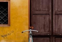 bicycle / by Barbara Gamelas