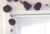 Holiday / by Shanna Kesler