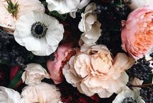 fleurs. / My favourite flowers. Roses, Lillies, Peonies, Wildflowers and more.