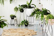 plantlife. / Inspiration of how to add lots of greenery to any space.
