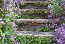 Stepping Stones / by Karen Lewis