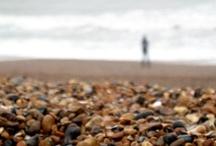 nature - take me to the sea