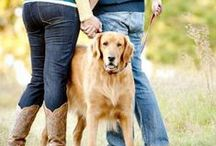 Photography: Pets/Animals