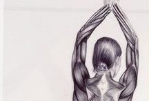 Anatomy / The geometry of our bodies informs the mindfulness in our lives.