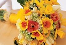 Floral Designs  / by Lauren Moss