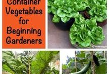 Vegetable Garden Ideas & Tips / Grow an organic vegetable garden indoors, outdoors, in containers--anywhere you can find a little space! Here are the best ideas, tips, and tricks for growing vegetables and fruits, whether you have an apartment balcony or a 5 acre farm.
