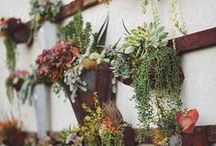 Outdoor decor / by Dacor