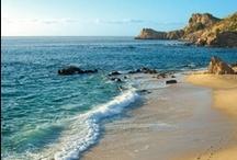 By the sea..... / by Diane Ellen