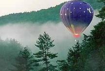 Balloons / by Diane Ellen
