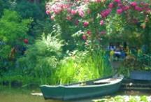 Gardens and Fields / by Diane Ellen