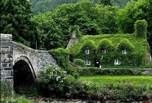 Thatched Cottages & Cobblestone Homes / by BumbleberryStitches