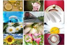 Thèmes Photo / Photography Themes / Suggestions de défis photographiques pour stimuler la créativité /  Photography challenge lists to stimulate creativity