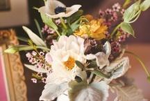 f.l.o.r.e.s flowers, plants, flores
