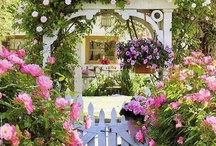 some day when I'm old and gray I will have a beautiful garden / by Ann Irvin