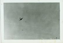 Flight / by oliver Wasow
