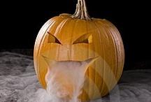 Halloween Decor, Treats & Costumes / by Katlin Osburn