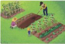 Gardening/Outdoors / Tips and ideas for growing food, flowers, greenery and cute decoration ideas / by Veronica Lowe