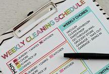 Organize Shmorganize!