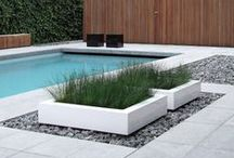 Home - Landscaping / by Matthew Trego