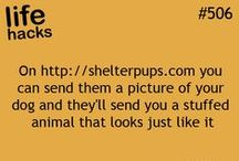 -lifehack- / by Alexis Rowell