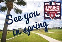 2013--2015 Cardinals Spring Training / by Rita Diffenauer