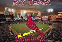 My St. Louis Cardinals # 2 / by Rita Diffenauer
