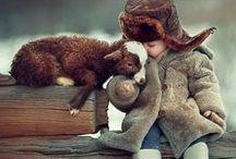 Lemmikkiosasto / Kaikenkarvaiset eläimet