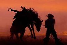 Country Boys / by Gail L. DeLashaw