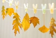All Things Fall! / Craft, recipe, decorating ideas, and more to help you celebrate fall.  / by The SITS Girls