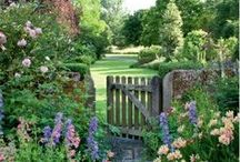 English Country Gardens / England is famous for their beautiful gardens! Take a look at this beautiful collection of images and links about English Country Gardens.