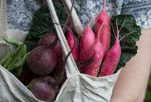 :: Sweet Crops :: / by Anna Tausend