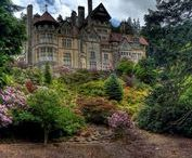 Cragside ~ Morningside Manor ~ Shine Like the Dawn / Cragside is the inspiration for the setting of Shine Like the Dawn ~ Morningside Manor. It's in Northumberland, England.
