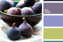 Color Schemes / Lovely color schemes. Lots of color combinations to inspire your DIY projects. Dive in and enjoy these gorgeous palettes.