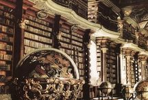 Library I Dream About
