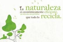 """Conciencia medioambiental / """"El gran desafío de hoy en día es salvar el medio ambiente y las condiciones para que se mantenga la vida en la Tierra; para ello necesitamos a los filósofos y a la filosofía"""" Jostein Gaarder.   """"Salvaguardar el medio ambiente.... Es un principio rector de todo nuestro trabajo en el apoyo del desarrollo sostenible; es un componente esencial en la erradicación de la pobreza y uno de los cimientos de la paz"""" Kofi Annan."""
