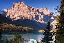 H | Canada Day / Celebrate Canada Day!