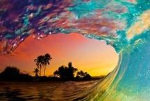 Surfing / by Sandie Dee