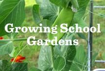 Growing School Gardens / With our Grants for Gardens & Garden Funder programs, we've helped grow more than 270 school gardens! Meet some of our amazing applicants & find tips to create or sustain a school garden of your own. / by Annie's Homegrown