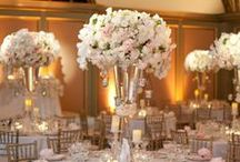 Marry Me- Decorations / by Virginia Herring