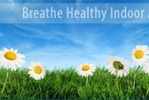 Live Healthy / by BuddyAllen CarpetOne.com