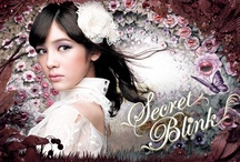 """Secret Blink""2013 Spring"