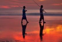 Awesome Bali & Indonesia / by Nobuo Tsuchiya