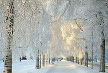 Awesome Scandinavia - Denmark, Norway, Sweden / Denmark, Norway, Sweden / by Nobuo Tsuchiya
