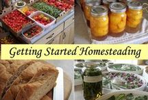 Homesteading / Homesteading and self sustaining