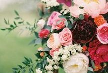Bold and Romantic Wedding Inspiration - Merlot