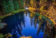 My Oregon / by Mary Foerster