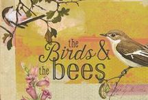 The Birds And The Bees / by White Stuff UK