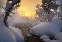 Seasonal inspirations / by Kelli Harlow