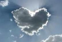Love is... / by Love2 Veg